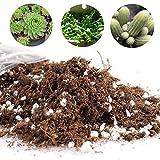Yovvin Mélange de Terre pour Plantation de Cactus et Plantes Succulentes -pour Maison, Jardin - Fibre de coco pour l'économie d'eau