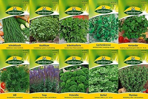 10 varietà | Assortimento di semi di erbe | adatto per principianti | ora prezzo speciale invernale