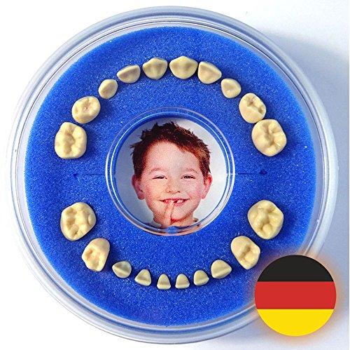 Firsty Milchzahndose Round< (Blau, Jungen) - Inklusive Logbüchlein und Aufkleber auf Deutsch - ABF Schneller Versand