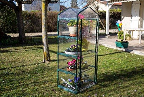 interougehome Mini Serre de Jardin 69x49x158cm Serre portative ...