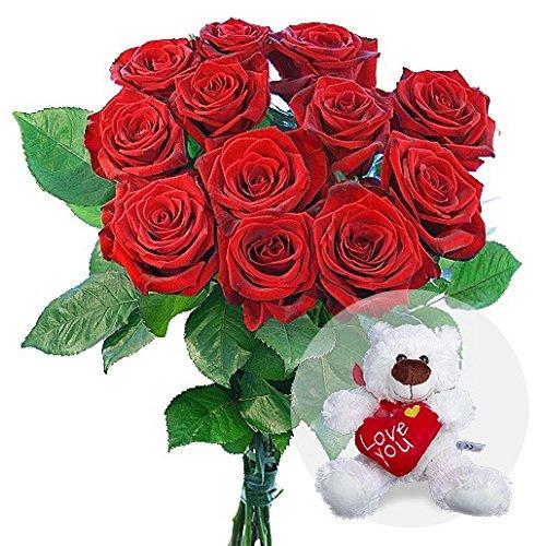 floristikvergleich.de 12 rote Rosen und Love-Teddy