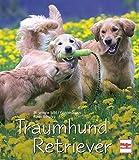 Traumhund Retriever