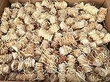 11 kg Zündwolli Anzünder aus Holzwolle und Wachs Ofenanzünder Kaminanzünder Grillanzünder Brennholzanzünder Kaminholzanzünder Holzanzünder