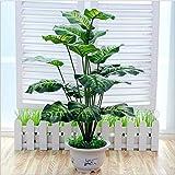 WEII Simulación de Bonsai Plantas Decoración del hogar Decoración Simulación Potted Bonsai Plantas en macetas,Hojas perennes,Un Tamaño