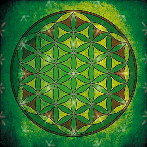 Mandalas - La Flor De La Vida, Elemento Tierra Cuadro, Lienzo Montado Sobre Bastidor (70 x 70cm)