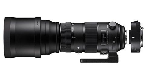 SIGMA 超望遠ズームレンズ Sports 150-600mm F5-6.3 DG OS HSM テレコンバーターキット キヤノン用 フルサ...