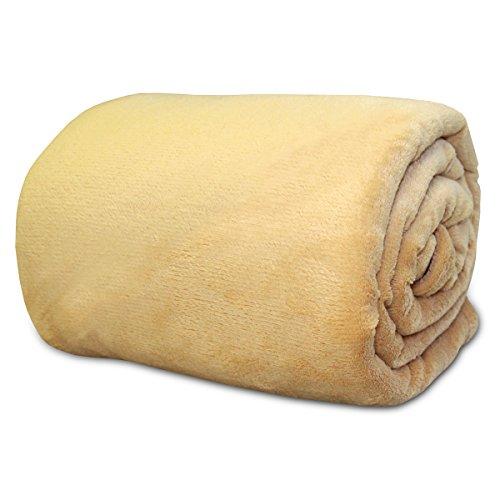 ふんわり 柔らか マイクロ ファイバー 毛布 ベージュ シングル サイズ (140×200cm)