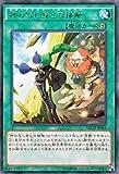 遊戯王/第9期/2弾/NECH-JP064 神の写し身との接触 R