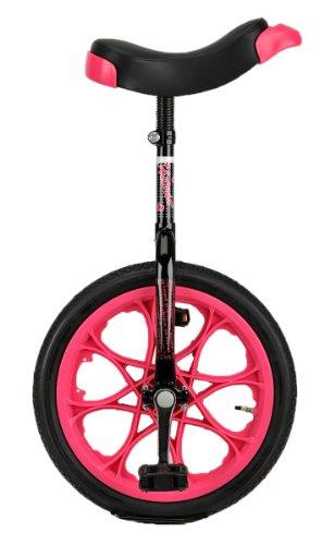 一輪車は小学生の女の子に人気