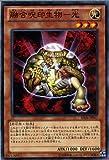 融合呪印生物-光 ノーマル 遊戯王 機光竜襲雷 sd26-jp017