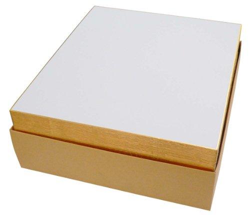 エヒメ紙工 画仙色紙 EGS-50P 242×272mm 50枚入