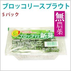 長野県産 ブロッコリースプラウト 無農薬 無化学肥料 5パック