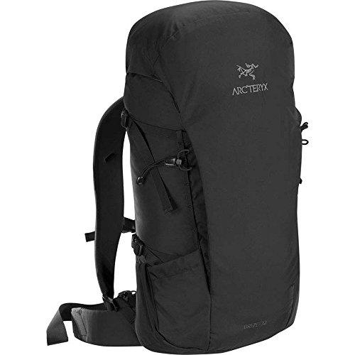 (アークテリクス) ARC'TERYX Brize 32 Backpackバックパック (Black) [並行輸入品]