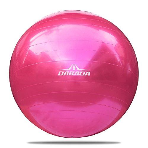 DABADA(ダバダ) バランスボール エクササイズボール ヨガボール 直径65cm 全5色 フットポンプ付き (ピンク)
