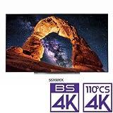 東芝 55V型 有機ELパネル 地上・BS・110度CSデジタル4Kチューナー内蔵テレビ(別売USB HDD録画対応) REGZA 55X920