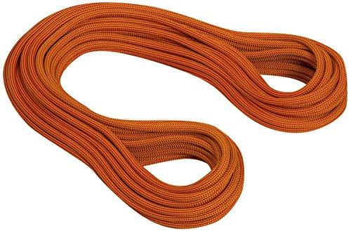 MAMMUT(マムート) クライミング ロープ 10.0 Galaxy Dry 50m シングル ファイヤー/オレンジ 【日本正規品】...