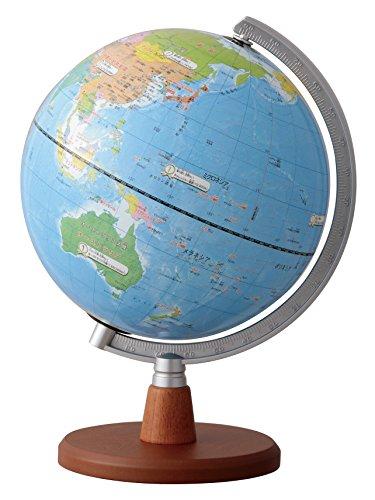 レイメイ藤井 地球儀 先生おすすめ小学生の地球儀 20cm OYV11
