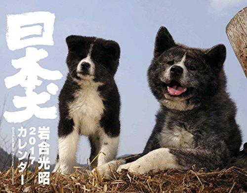 2017カレンダー 日本犬 (カレンダー)