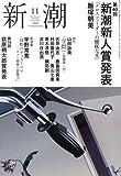 新潮 2008年 11月号 [雑誌]