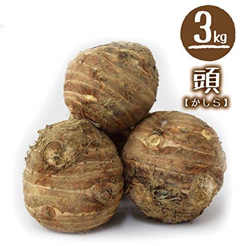 福井県産 中村農園 上庄里芋 頭(かしら) 3kg 種用・食用 土付き (お一人様1箱迄)