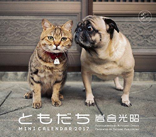 2017ミニカレンダー 岩合光昭ともだち (カレンダー)