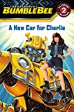 Transformers Bumblebee: Reader (Passport to Reading Level 2)