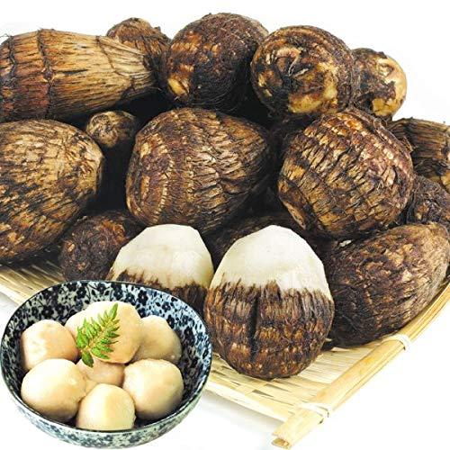 国華園 九州産 小玉 白芽大吉 2kg1組 里芋 サトイモ