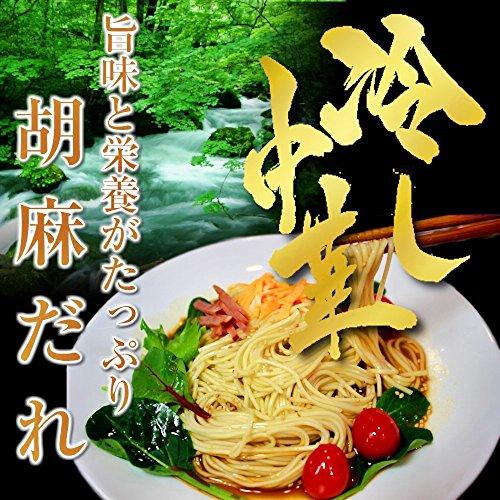 冷麺お試しセット(6人前) 特製 胡麻ダレ冷やし中華