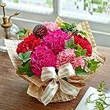 日比谷花壇 母の日 アレンジメント シェールママン ピンク 大輪カーネーション
