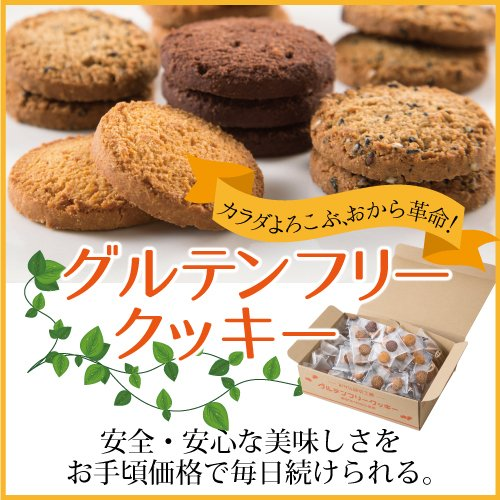【国産おから100%】グルテンフリークッキー4種セット(48枚入)