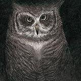 フクロウの声が聞こえる(完全生産限定盤)