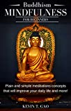 Buddhism Mindfulness for Beginners: Plain and simple meditations concepts that will improve your daily life and more! (English Edition)