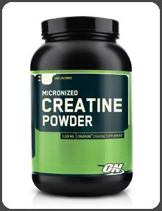 Optimum Nutrition CREATINE POWDER