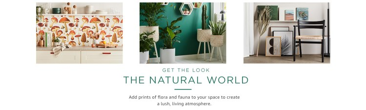 Get the look: The natural world