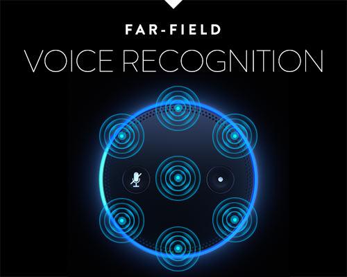 Far-field Voice Recognition