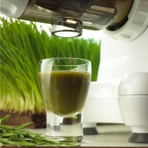 WHEATGRASS AND LEAFY GREENS Wheatgrasses, kale, cabbage, spinach, and pine tree needles are just some of the natural products that can be juiced with the Omega 8003 Nutrition Center. Enjoy the best that nature offers in raw foods of all kinds and juice them for full nutritional benefits.