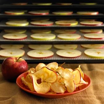 Dehydrate Fruits. Dehydrate Vegetables. Dehydrate Meat or Fish for Jerky. Re-crisp breads, crackers, etc. Make soup mixes and reconstitute later. Make animal / pet treats. Use for arts & crafts such as cake decorations, potpourri, dough art, drying photographs.