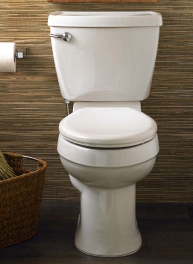 Image result for toilet bown close lid