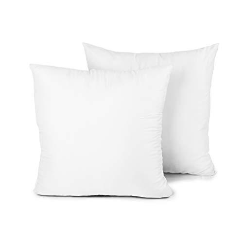 Edow Throw Pillow Insert, Set of 2 Hypoallergenic Down Alternative Polyester Square Form Decorative Pillow, Cushion,Sham Stuffer. (White, 20x20)