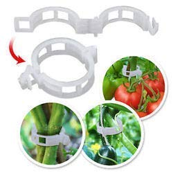 GROW GARDEN 50 Pcs Plant Support Clips for Garden Tomato Garden Vegetables Vine to Grow Upright and Makes Plants Healthier Twine Clips (50)