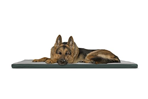 FurHaven Pet Kennel Pad | Reversible Two-Tone Water-Resistant Crate or Kennel Pad Pet Bed for Dogs & Cats, Green/Gray, X-Large