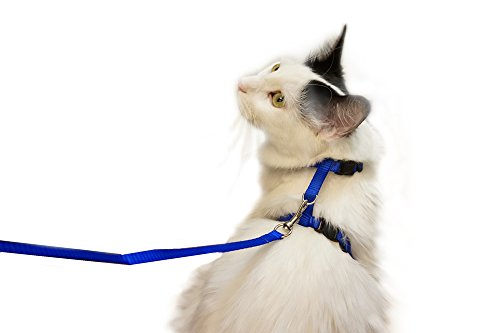 Juvale Cat Harness – Small Pet Harness Leash Adjustable Nylon Rope Strap Kitty Harness and Leash Collar 4.5 Inches, for Cats and Small Dogs - 55 Inches Long 1
