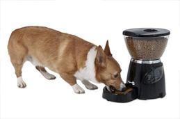 Aspen-Pet-Lebistro-Programmable-Cat-and-Dog-Feeder-2-Sizes-Black