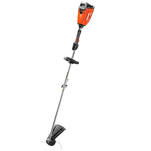 ECHO CST-58VBT 58-Volt Lithium-Ion Brushless Cordless String Trimmer - Battery and Charger Not Included