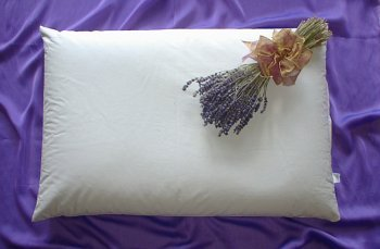 Beans72 Organic Aromatherapy Buckwheat Pillow - Twin/Standard Size (20 inches x 26 inches)