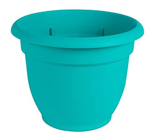Bloem Ariana Self Watering Planter, 6', Calypso (AP0627), 6-Inch,