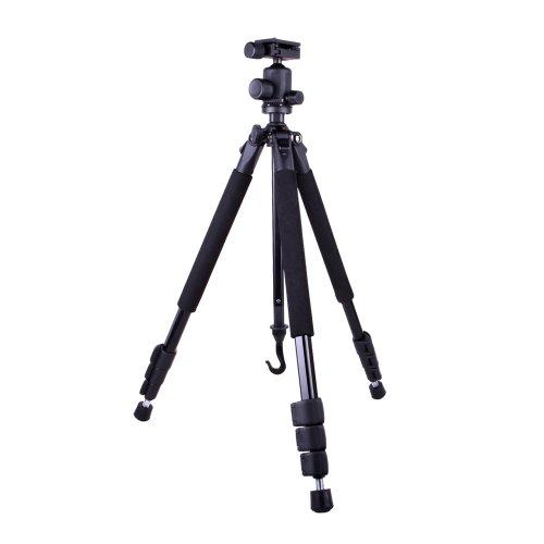Image Result For Amazon Com Canon Powershot Sd Mp Digital