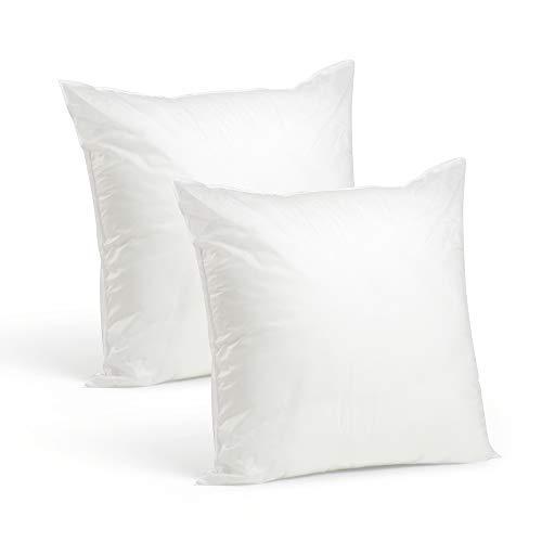 Set of 2-20 x 20 Premium Hypoallergenic Stuffer Pillow Insert Sham Square Form Polyester, Standard/White - Made in USA