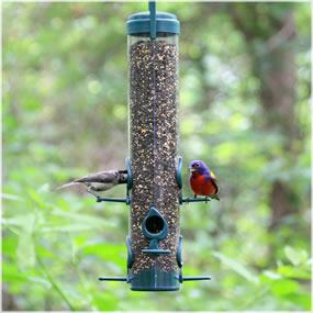 Economical tube-style feeder for finches and other wild birds.