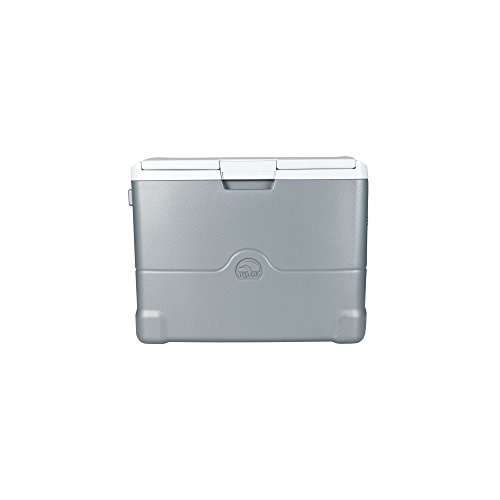 Igloo Iceless Thermoelectric 40 Quart Cooler, Silver